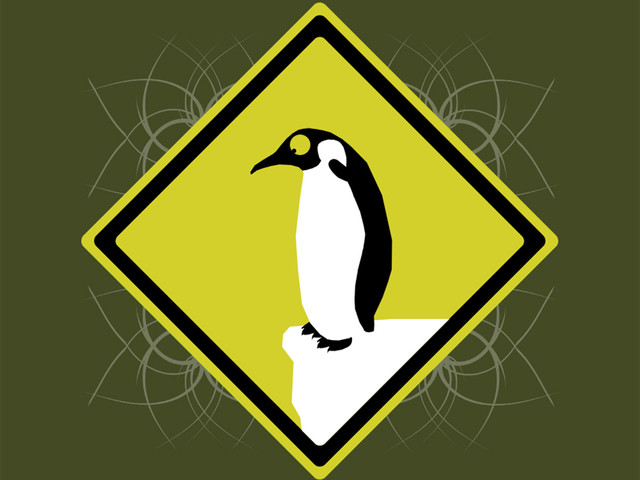 Penguins curiosity