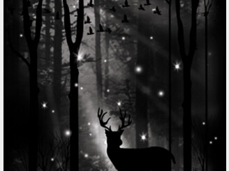 Goodnight My Deer by elmercanoy