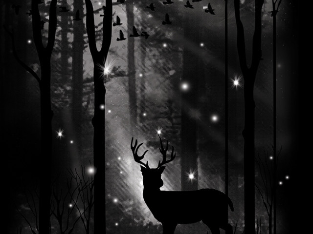 Goodnight My Deer