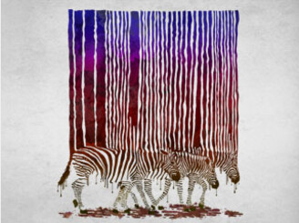 Stripes of Life by pippi