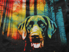 The Lost Dog T-Shirt Design by