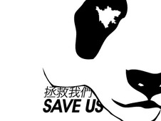 Save The Pandas T-Shirt Design by