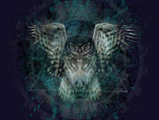 The Owl's Ritual T-Shirt Design by