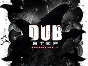 Dubstep Experience by Tyrell_Ace