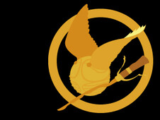 The Hunger Potter Games T-Shirt Design by