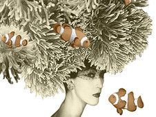Her Clownfish Hat T-Shirt Design by