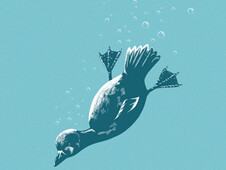 The Diving Duck T-Shirt Design by