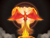 The Phoenix Rises by JustPetrucci