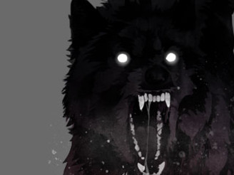 black wolf by Albany