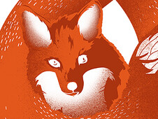Infinity Fox T-Shirt Design by