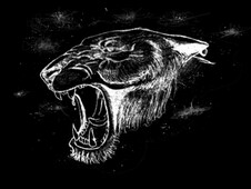 Panther spirit T-Shirt Design by