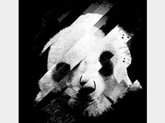 Broken Panda by sknny