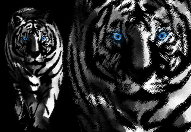 white tiger in art