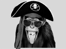 monkey pirates T-Shirt Design by