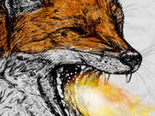 FIREFOX T-Shirt Design by