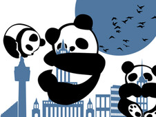 Panda T-Shirt Design by