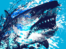 Shark Attack T-Shirt Design by