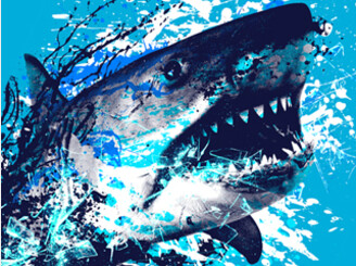 Shark Attack by Moncheng
