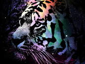 loidz wearing Tiger Season by Moncheng