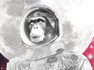 Space Chimp by DJ43209