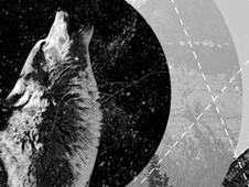 Howling Wolf T-Shirt Design by