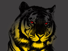 Red-eyed tiger T-Shirt Design by