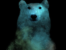 Nebula Bear T-Shirt Design by