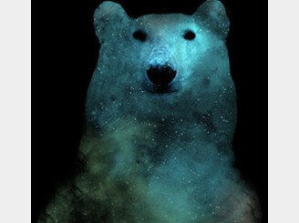 Nebula Bear by thecreep