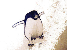 penquin. T-Shirt Design by