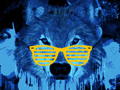 wolf in the blue by priyanshu