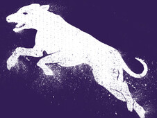 WhiteDOG T-Shirt Design by