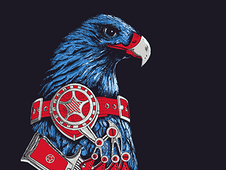 American Eagle T-Shirt Design by