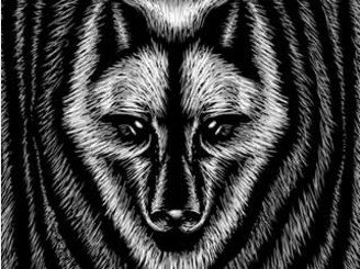 Wolf Fingerprint by kuli_grafis