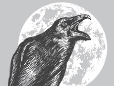 Night Caw T-Shirt Design by