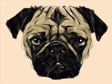 Geometric Pug T-Shirt Design by