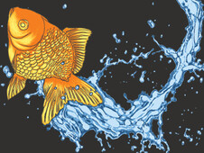 Splash T-Shirt Design by