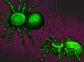 Spiders!!! by lydea