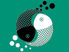 Yin Yang Fishes T-Shirt Design by