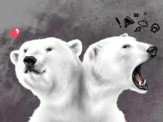 Beware of the Bi-polar Bear by marcosmoraes