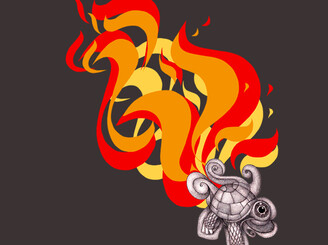 Flaming tortois by peYote