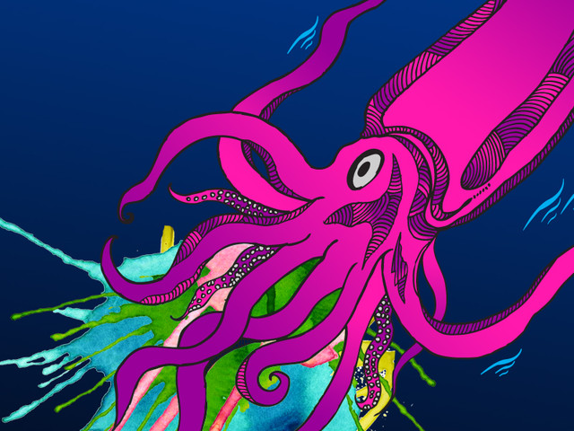 The mysterious giant squid