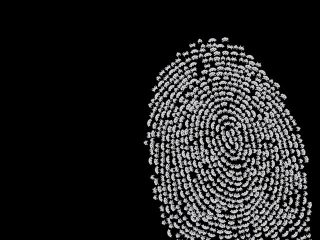 Fingerprint Invasion