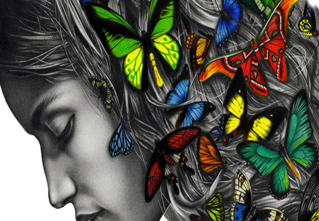 Thinking with butterflies