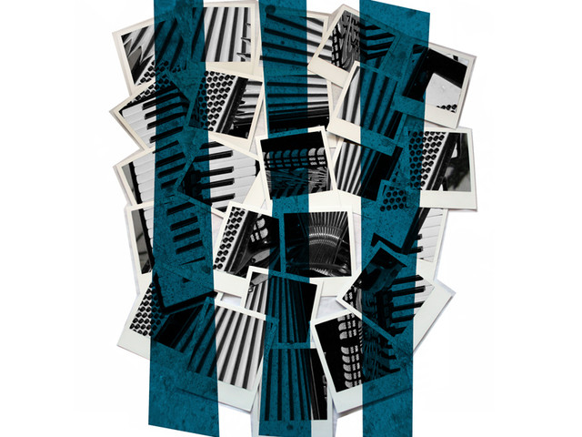 Polaroid accordion