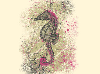 The Majestic Seahorse by Matt-ate-u