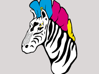 Rock Zebra by dlcramer