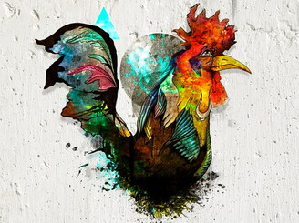 Rooster's Dream by thalesfernando