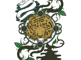 Way Of The Tiger  by 1000eyesdesign