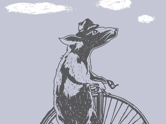 Cycling Rat