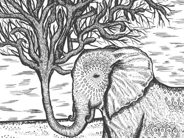 The Tall Tale of The Eletrunk